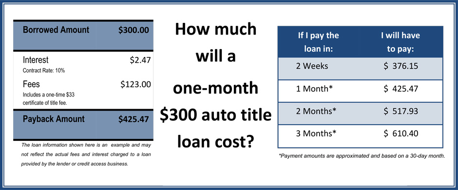 Auto Title Single Pay $300 loan